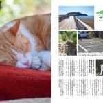 猫島のら猫マガジン 003