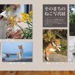 猫島のら猫マガジン 004