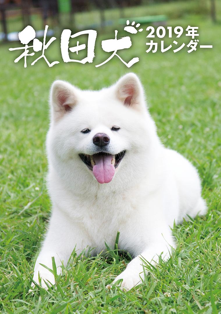 卓上 秋田犬 2019年カレンダー