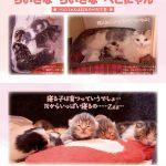 ニャンころりん。子猫カレンダー4 003
