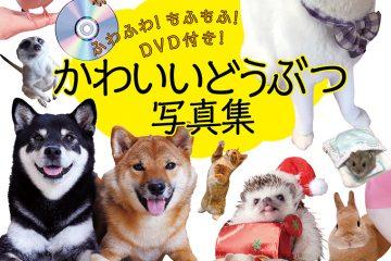 ふわふわ!もふもふ!DVD付き!かわいいどうぶつ写真集
