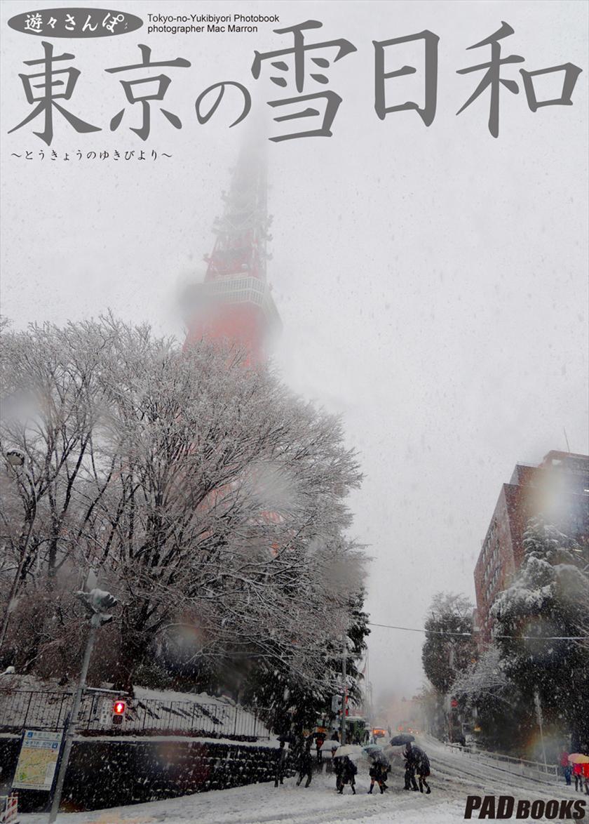 遊々さんぽ 「東京の雪日和」
