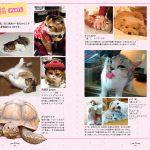 Love Animals ~オモかわいいうちの子たち~ 002