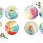 Love Animals ~オモかわいいうちの子たち~ 003