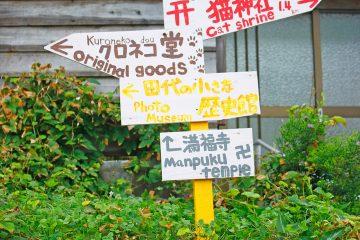 田代島のニャンころりん。 004
